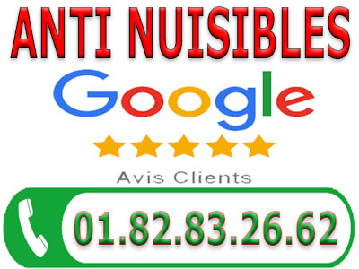Traitement Punaises de lit Neuville sur Oise 95000